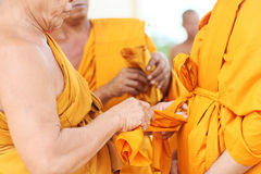 Close-up to Newly ordained Buddhist monk Royalty Free Stock Images
