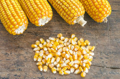 Close up to the pile of grain corn on a wooden background . Stock Photo