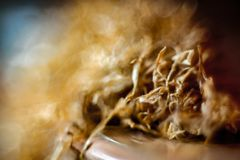 Closeup tobacco super macro royalty free stock photos