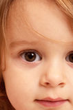 Close up of Toddler Royalty Free Stock Photography