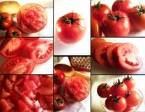 Close up tomato Royalty Free Stock Photo
