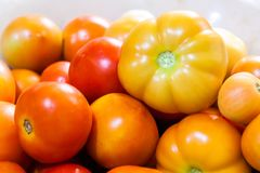 Close up of tomatoes Royalty Free Stock Image