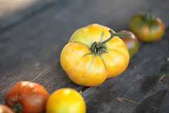 Close-up on tomatoes on old wooden table. Tomatoes, cooked with herbs for the preservation on the old wooden table stock photo