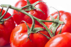 Close up of tomatoes pearling with water. Several ripe tomatoes with drops of water Stock Photography