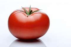 Close-up of tomatoes on white background Royalty Free Stock Image