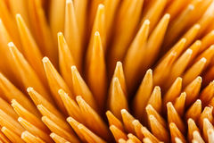 Close up Toothpick Royalty Free Stock Images