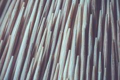 Close up Toothpick macro background. Close up of Toothpick macro background Stock Photo