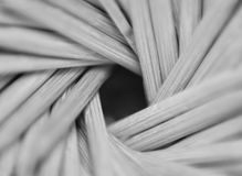 Close-up toothpicks abstract background. Stock Photography
