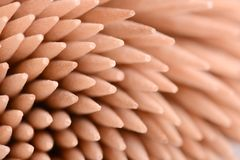 Close up of toothpicks Royalty Free Stock Photography