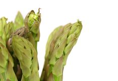Close-up of top asparaguses. Royalty Free Stock Image