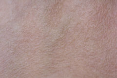 Close Up Top of Hand Skin Texture. With some Hairs Royalty Free Stock Photo