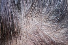 Top view asian woman head has started to going gray stock image
