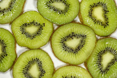 Close up top view macro kiwi fruit slices for background Royalty Free Stock Photography