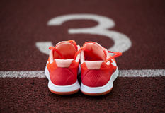 Close-up, top view running shoes for women Stock Image