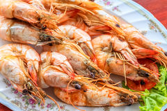 Close up top view steamed shrimp/prawn in the white plate ready to eat Royalty Free Stock Photo