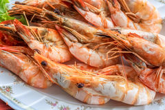 Close up top view steamed shrimp/prawn in the white plate ready to eat Stock Photos