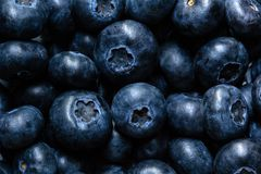Close up, top view of yummy blueberries stock photos