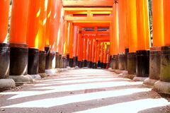 Close-up of Torii gate Stock Images