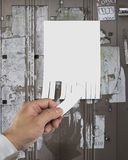 Close-up of torn off empty advertising contact message Stock Image