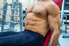 Close-up torso of male athlete at gym. Close up torso of powerful crossfit instructor in gym Royalty Free Stock Photography