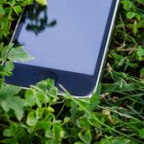 Touch screen smartphone lying on the green grass Royalty Free Stock Image