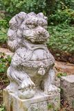 Close up of a chinese lion sculpture Royalty Free Stock Photo