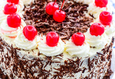 Close-up of traditional English Blackforest gateau. High angle closeup view of a delicious fresh blackforest gateau decorated with the traditional whipped butter stock images