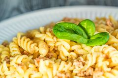 Traditional Italian pasta or fussili with mince. Close-up of traditional Italian spaghetti or fusilli with meat stuff on wooden background Stock Images