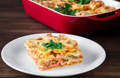 Close-up of a traditional lasagna topped with parskey leafs served on a white plate Royalty Free Stock Images