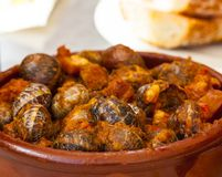 Close up of traditional spanish tapas stock photo