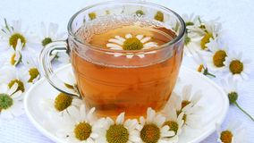 Close-up, transparent, glass cup with chamomile tea, on a white saucer. Everything is decorated with chamomile flowers stock footage