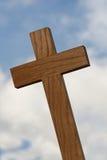 Close-up transversal de madeira Imagem de Stock