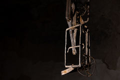 Close up of a trap hanging in basement. In a Halloween horror concept Royalty Free Stock Photo