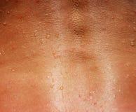 Close up traseiro da espinha da mulher Imagens de Stock