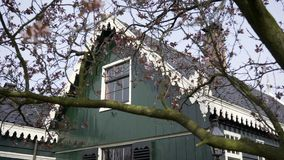 Country house in dutch style. Close-up tree with buds beginning to bloom. View typical country house in dutch style through brunches. Early spring in Zaanse stock video