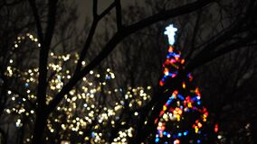 Close-up of tree`s branches in the dark with blurred silhouette of Christmas tree with garland of colorful lights on the. Background. Beautiful scenery of stock footage