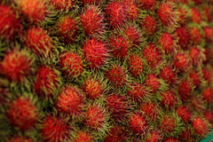 Close up for Tropical Fruits Rambutan for background. Stock Photography