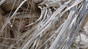 Close up of tropical hut roof made of old dry palm leaves. Natural tropical texture close up background stock footage