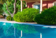 Swimming pool and green platns Royalty Free Stock Photography