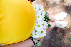 Close up on tummy of pregnant woman, wearing yellow dress, holding in hands bouquet chamomile flowers outdoors, new life concept. Royalty Free Stock Photo