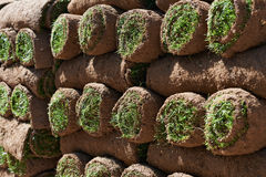 Close Up Of Turf Rolls Waiting To Be Laid As New Lawn Stock Photography
