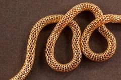 Knitted chain. A close up of a twisted golden knitted chain on a brown background Royalty Free Stock Images