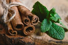 Close-up twisted sticks of cinnamon bundle, green leaves of fresh mint, selective focus, marco, set Stock Images