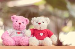 Close up two bears doll. Sitting together, Valentine`s day and love concept Royalty Free Stock Photos