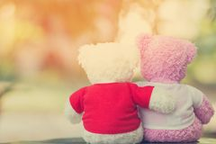 Close up two bears doll. Sitting together, Valentine`s day and love concept Royalty Free Stock Photo