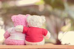 Close up two bears doll. Sitting together, Valentine`s day and love concept Stock Photography