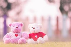 two bears doll sitting together Stock Photos