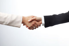 Close-up of two businesswomen shaking hands Royalty Free Stock Photo