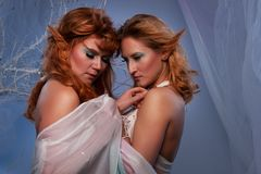 Close-up of a two elf women Royalty Free Stock Image
