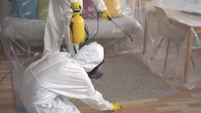 Close up two exterminators are engaged in cleaning